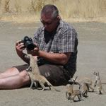 Photo Safari South Africa Kalahari Kgalagadi Transfrontier Park Bushman Holidays