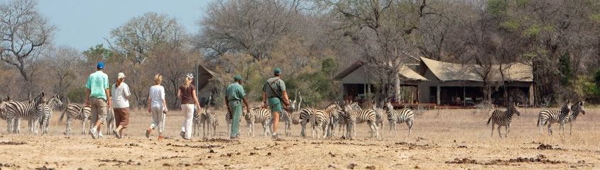 Walking Safari Holidays Africa Walking Safaris South Africa Zambia