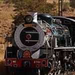 Rovos Rail Golf Train South Africa Fancourt Garden Route Cape Town Durban