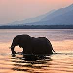 Lake Kariba Photo Zimbabwe Luxury Flying Safari Victoria Falls Hwange