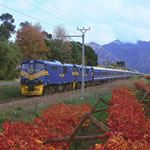 South Africa Blue Train Safari Holidays Vacations Cape Town Kruger National Park Pretoria
